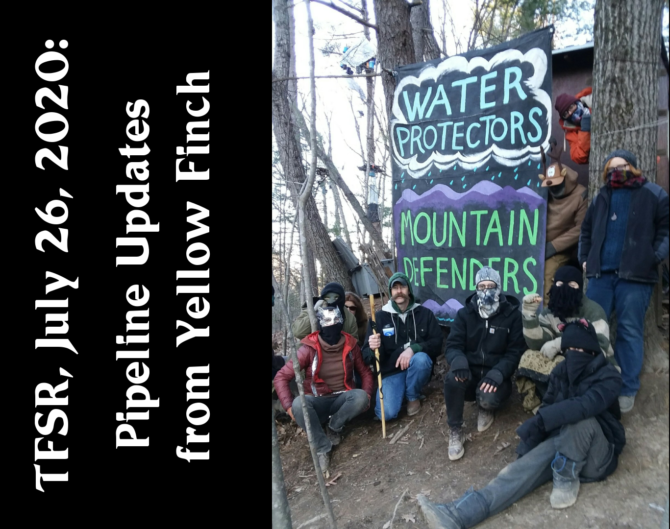 """Water Protectors / Mountain Defenders"" photo from Yellow Finch Tree Sit"